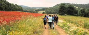 Francigena Marathon @ Acquapendente | Acquapendente | Lazio | Italia
